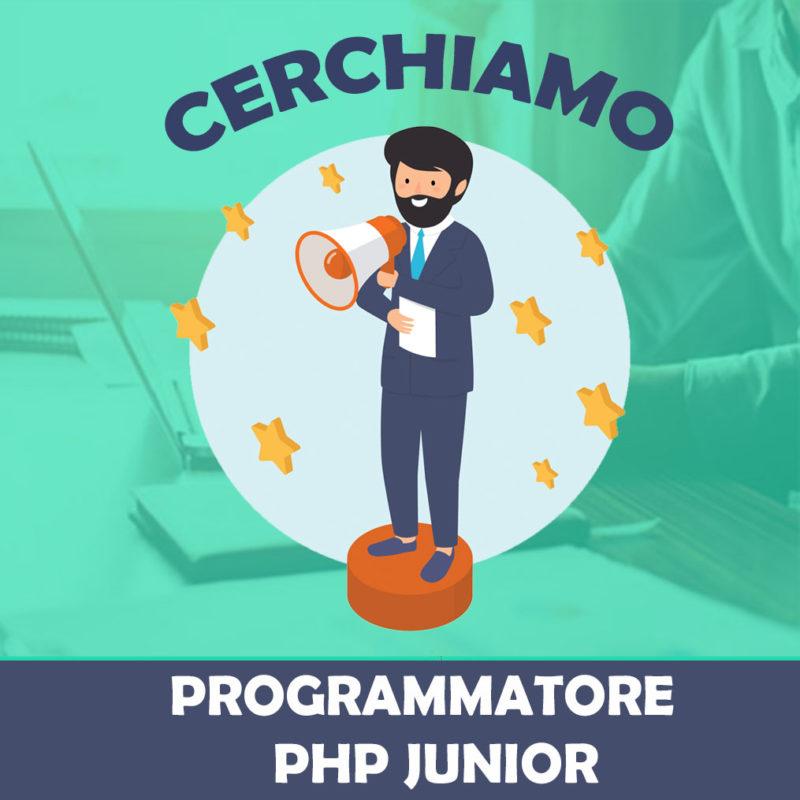 offerta di lavoro programmatore